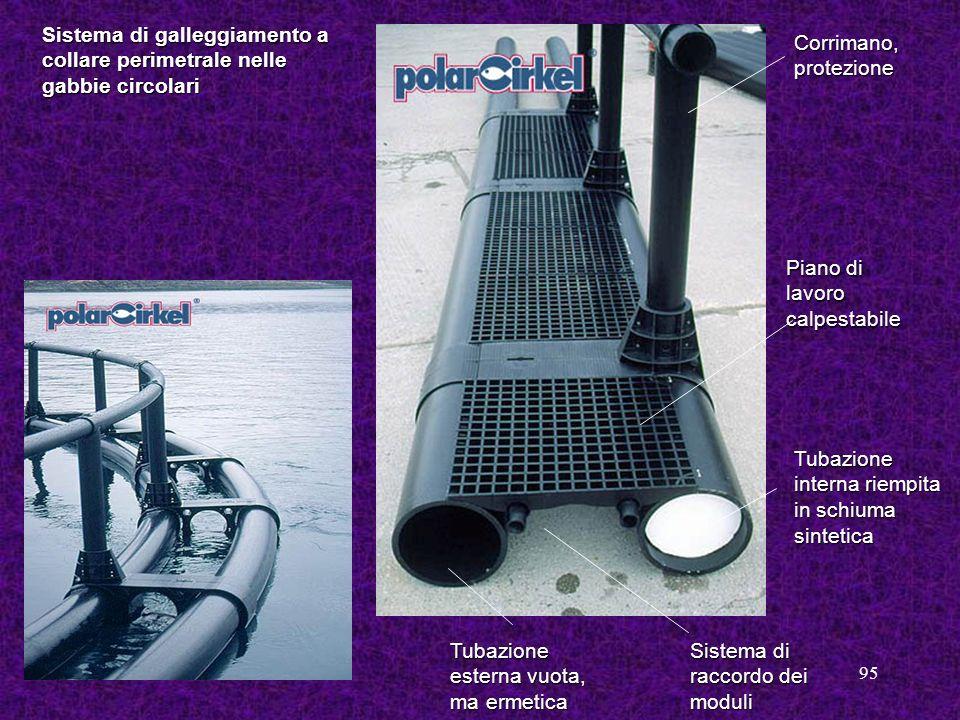 Sistema di galleggiamento a collare perimetrale nelle gabbie circolari