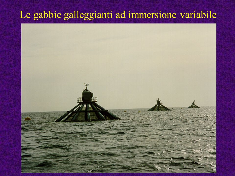 Le gabbie galleggianti ad immersione variabile