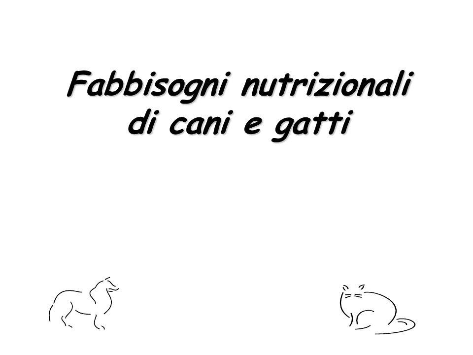 Fabbisogni nutrizionali di cani e gatti