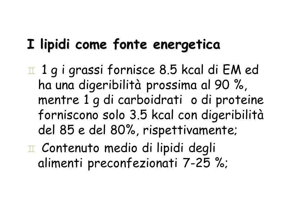I lipidi come fonte energetica