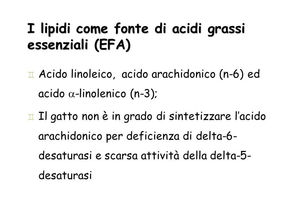 I lipidi come fonte di acidi grassi essenziali (EFA)