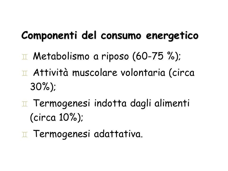 Componenti del consumo energetico