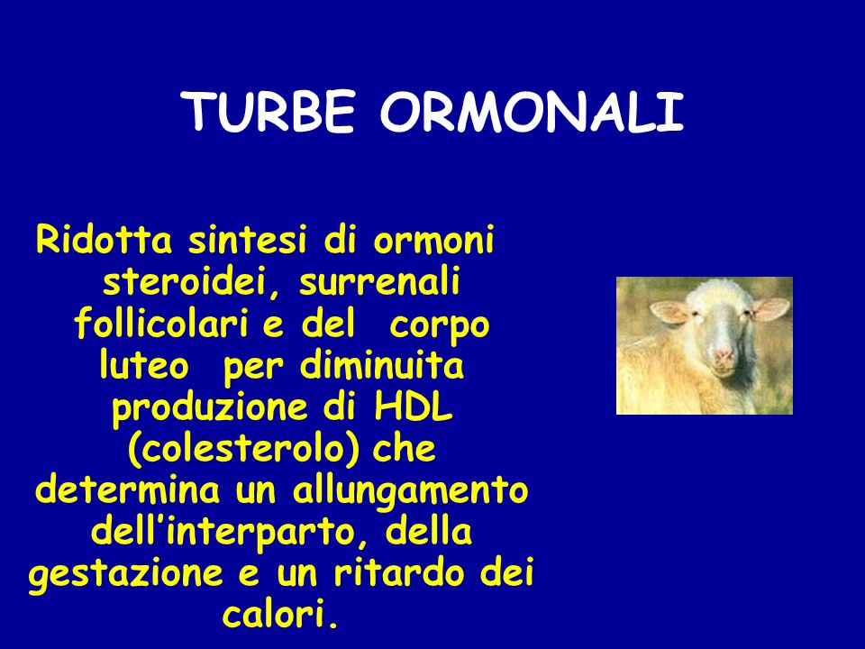 TURBE ORMONALI