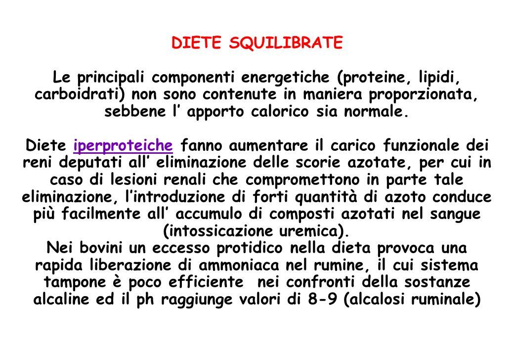DIETE SQUILIBRATE Le principali componenti energetiche (proteine, lipidi, carboidrati) non sono contenute in maniera proporzionata, sebbene l' apporto calorico sia normale.
