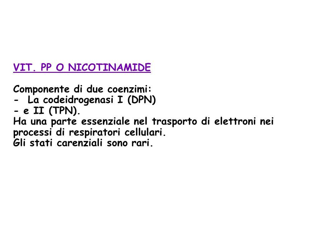 VIT. PP O NICOTINAMIDE Componente di due coenzimi: - La codeidrogenasi I (DPN) - e II (TPN).