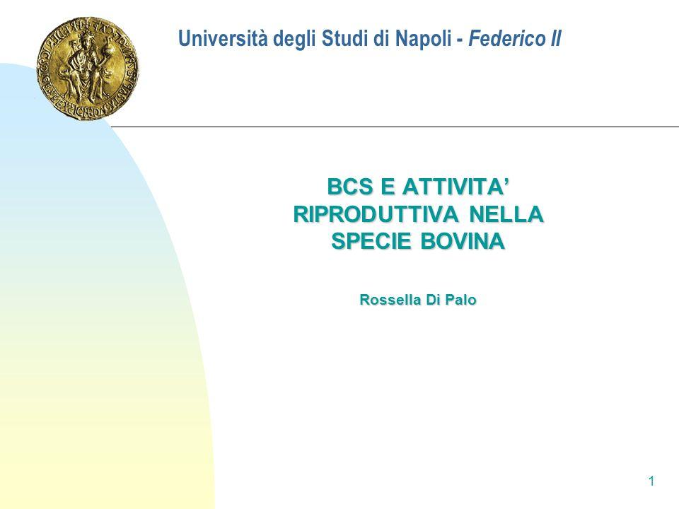 Università degli Studi di Napoli - Federico II