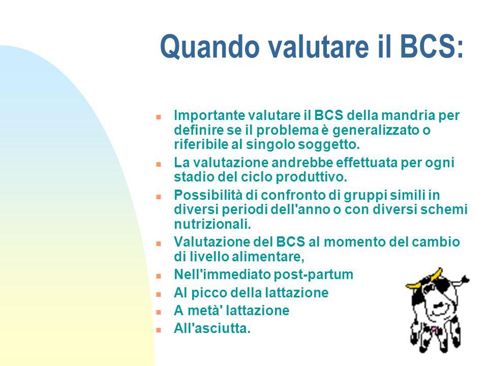 Quando valutare il BCS: