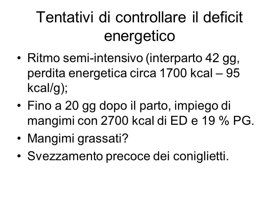 Tentativi di controllare il deficit energetico