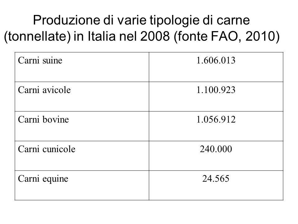 Produzione di varie tipologie di carne (tonnellate) in Italia nel 2008 (fonte FAO, 2010)
