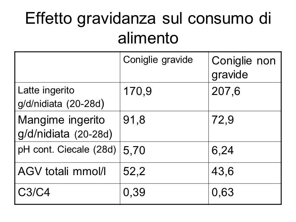 Effetto gravidanza sul consumo di alimento