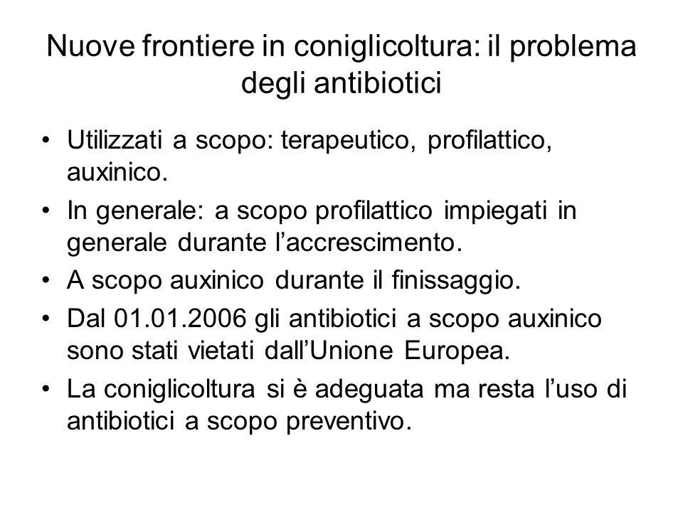 Nuove frontiere in coniglicoltura: il problema degli antibiotici