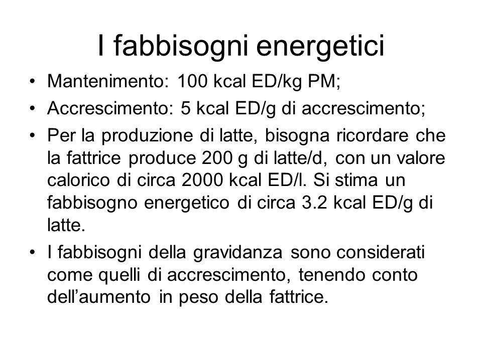 I fabbisogni energetici