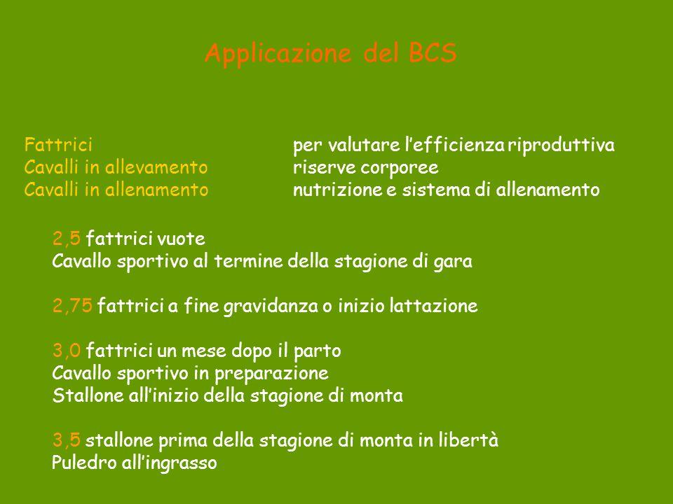 Applicazione del BCS Fattrici per valutare l'efficienza riproduttiva