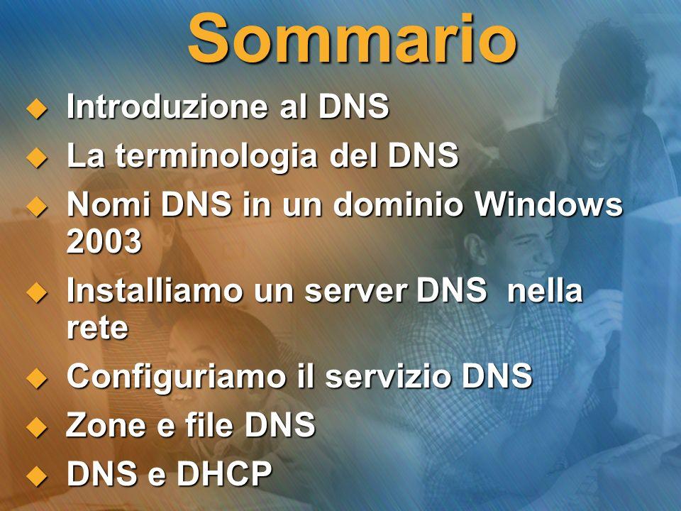 Sommario Introduzione al DNS La terminologia del DNS