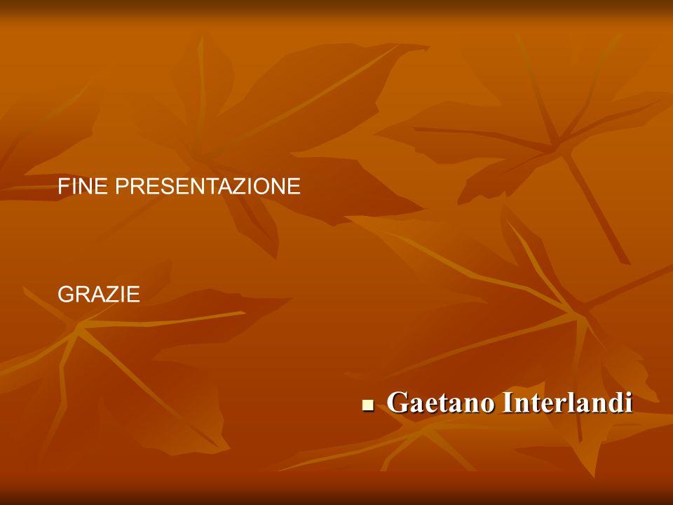FINE PRESENTAZIONE GRAZIE Gaetano Interlandi