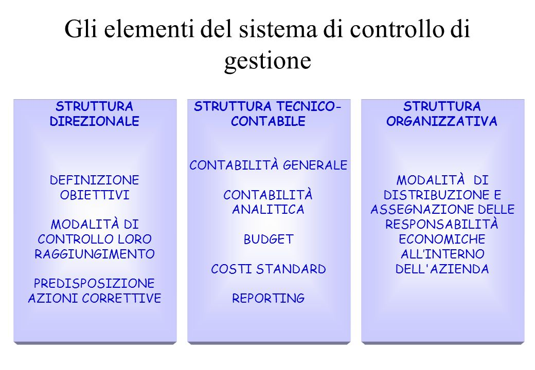 Gli elementi del sistema di controllo di gestione