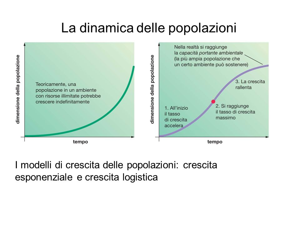 La dinamica delle popolazioni