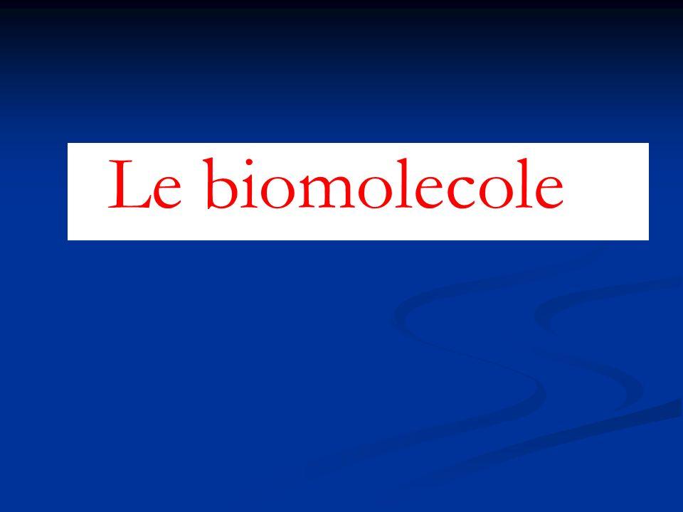 Le biomolecole 1 1