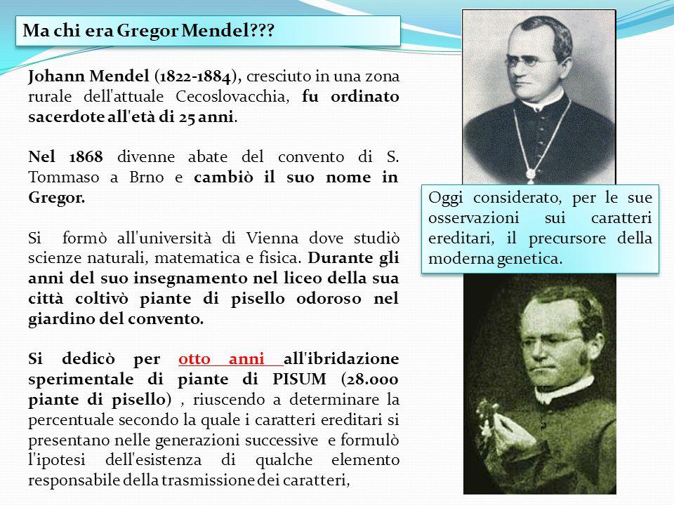 Ma chi era Gregor Mendel