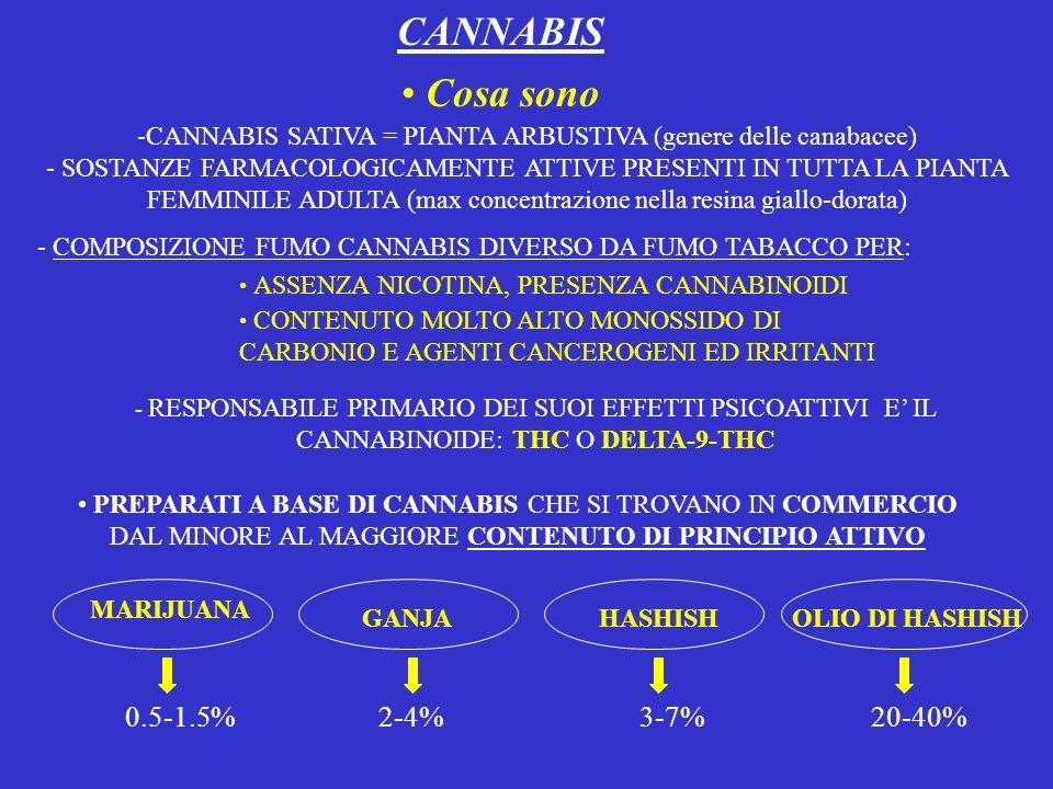 CANNABIS Cosa sono.