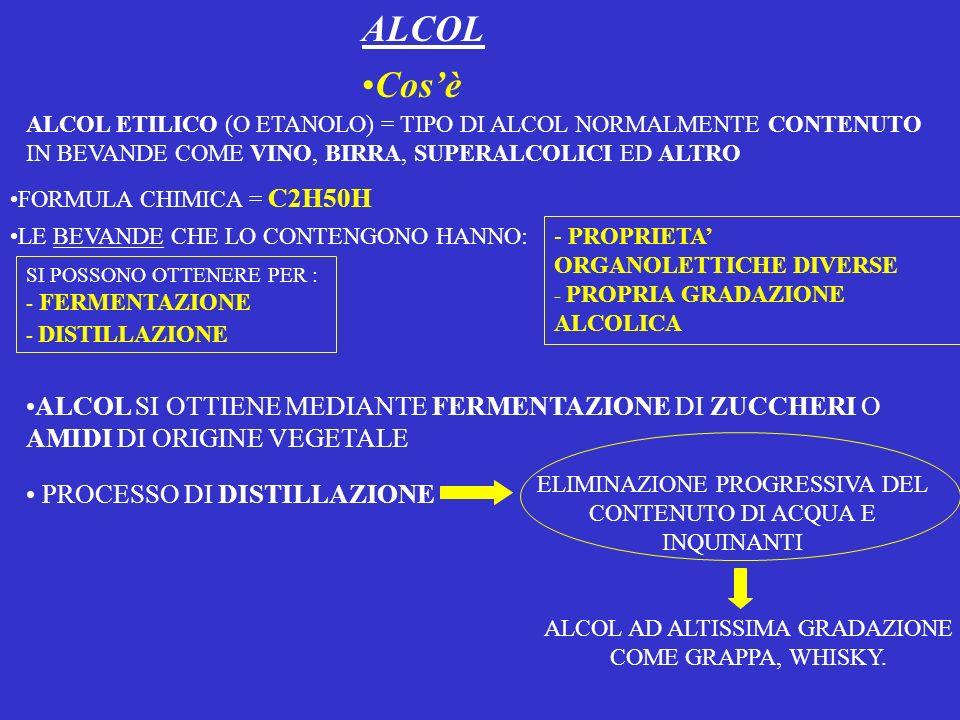 ALCOL Cos'è. ALCOL ETILICO (O ETANOLO) = TIPO DI ALCOL NORMALMENTE CONTENUTO IN BEVANDE COME VINO, BIRRA, SUPERALCOLICI ED ALTRO.