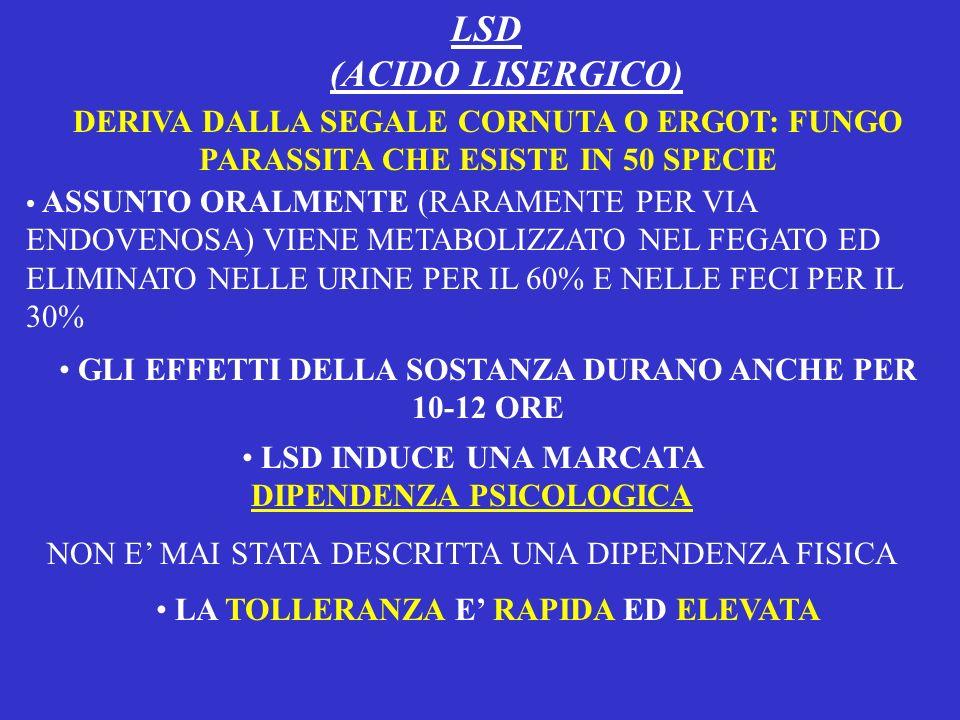 LSD (ACIDO LISERGICO) DERIVA DALLA SEGALE CORNUTA O ERGOT: FUNGO PARASSITA CHE ESISTE IN 50 SPECIE.