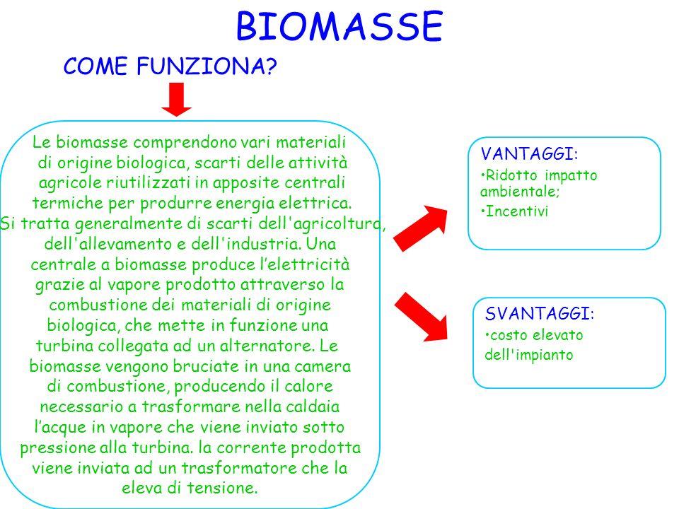 BIOMASSE COME FUNZIONA Le biomasse comprendono vari materiali