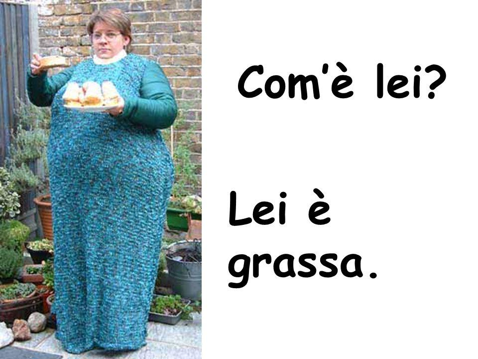 Com'è lei Lei è grassa.