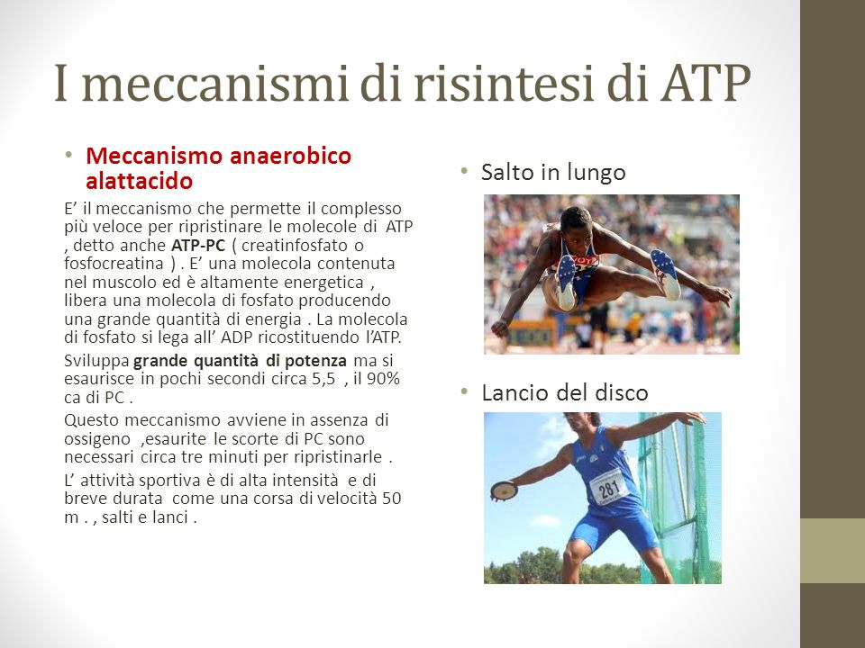 I meccanismi di risintesi di ATP
