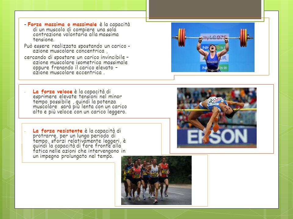 - Forza massima o massimale è la capacità di un muscolo di compiere una sola contrazione volontaria alla massima tensione.