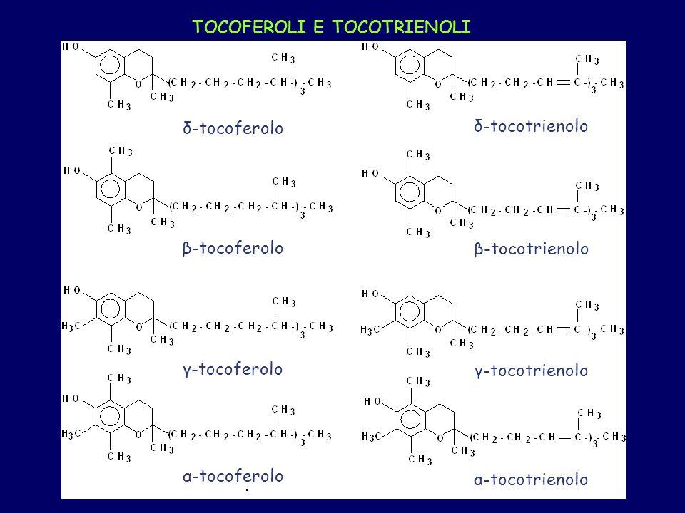 TOCOFEROLI E TOCOTRIENOLI