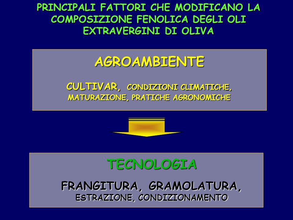AGROAMBIENTE TECNOLOGIA