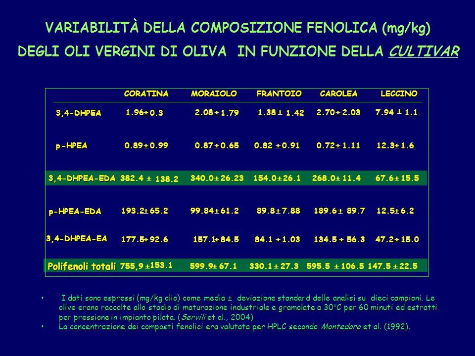 VARIABILITÀ DELLA COMPOSIZIONE FENOLICA (mg/kg)