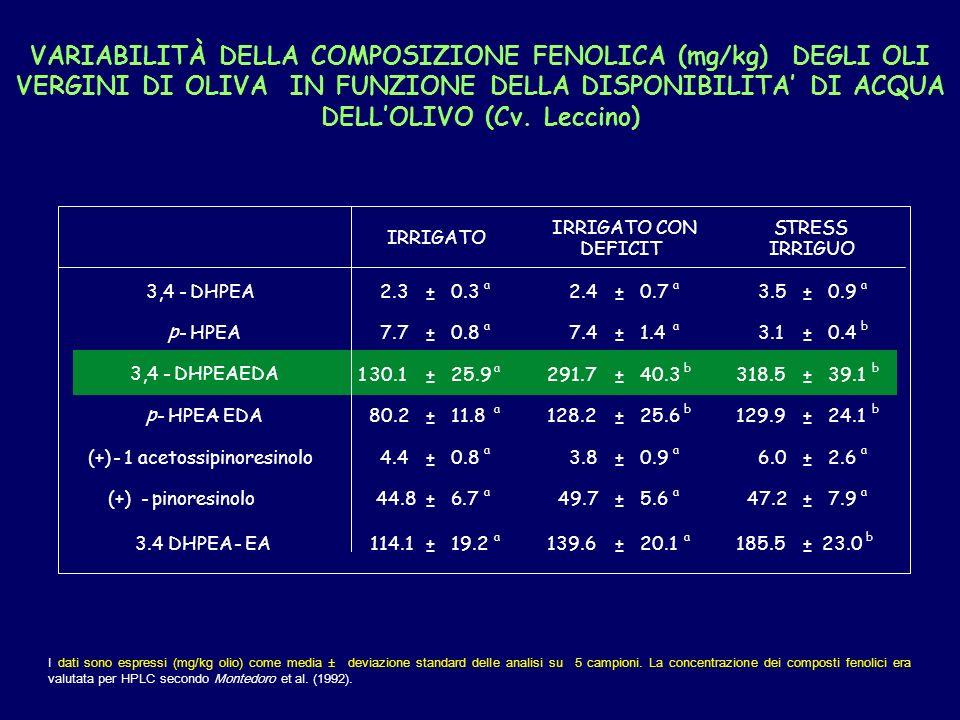 VARIABILITÀ DELLA COMPOSIZIONE FENOLICA (mg/kg) DEGLI OLI VERGINI DI OLIVA IN FUNZIONE DELLA DISPONIBILITA' DI ACQUA DELL'OLIVO (Cv. Leccino)
