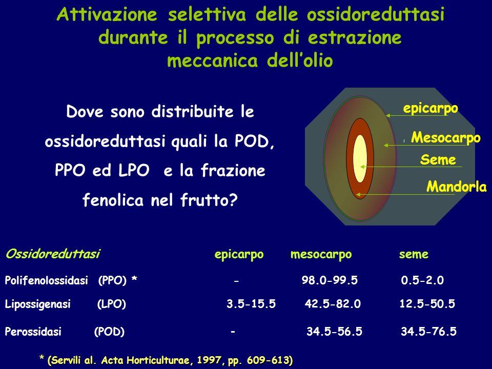* (Servili al. Acta Horticulturae, 1997, pp. 609-613)