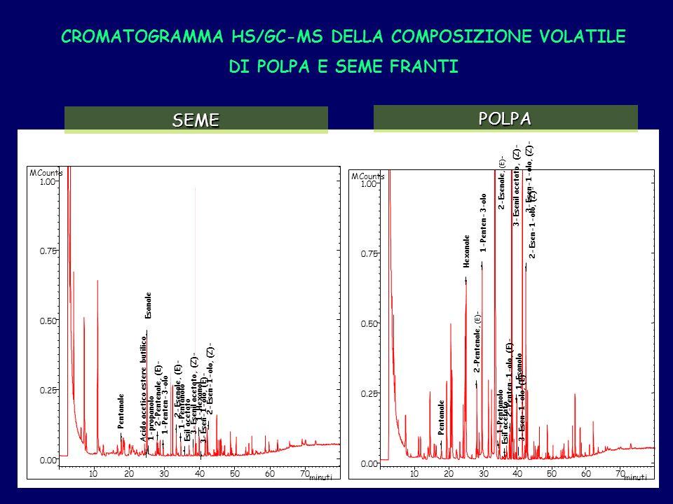 CROMATOGRAMMA HS/GC-MS DELLA COMPOSIZIONE VOLATILE