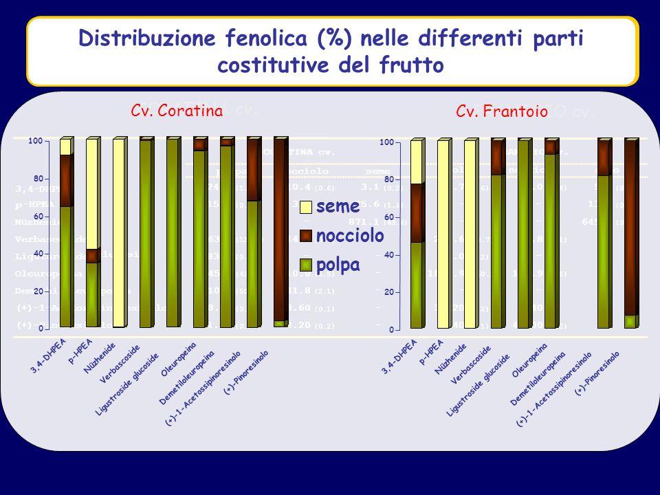 Distribuzione fenolica (mg/100g)