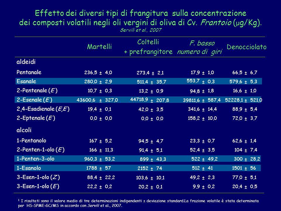 Effetto dei diversi tipi di frangitura sulla concentrazione