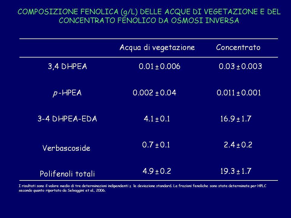 COMPOSIZIONE FENOLICA (g/L) DELLE ACQUE DI VEGETAZIONE E DEL CONCENTRATO FENOLICO DA OSMOSI INVERSA