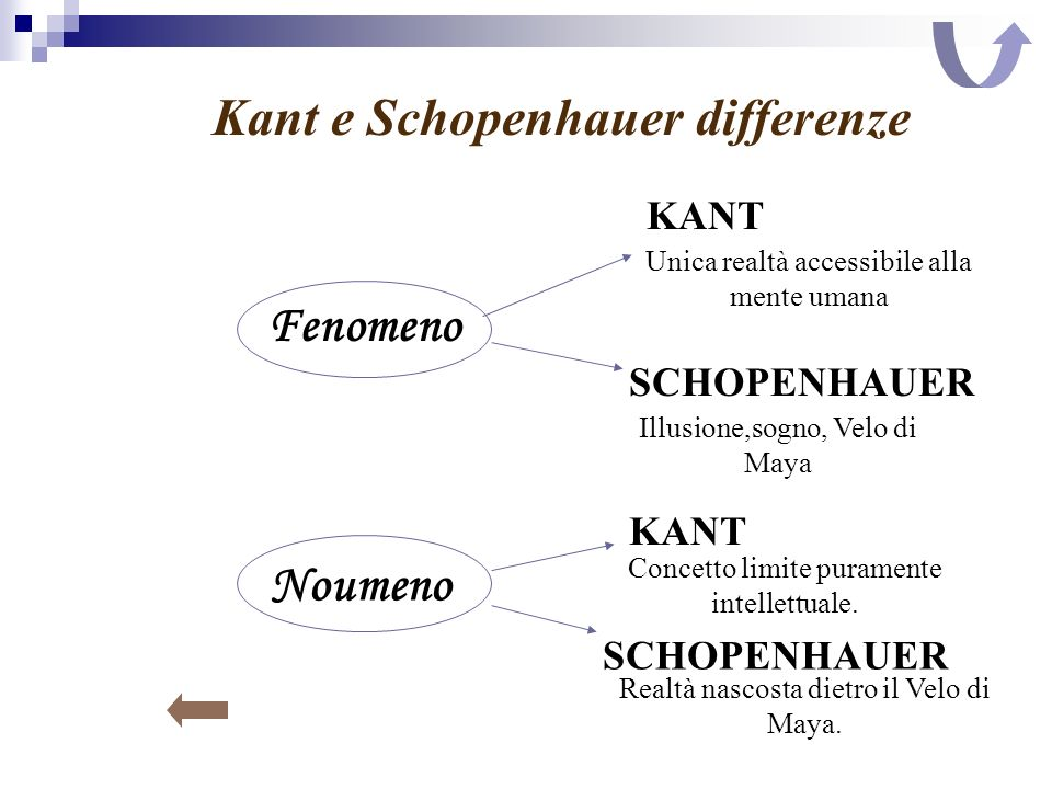 Kant e Schopenhauer differenze