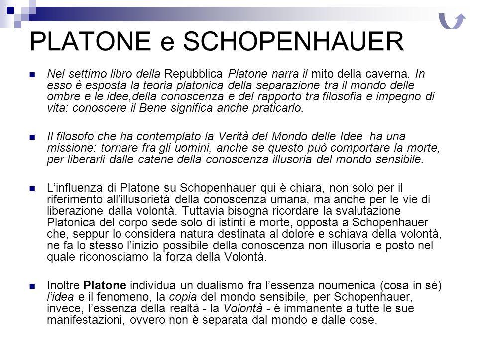 PLATONE e SCHOPENHAUER