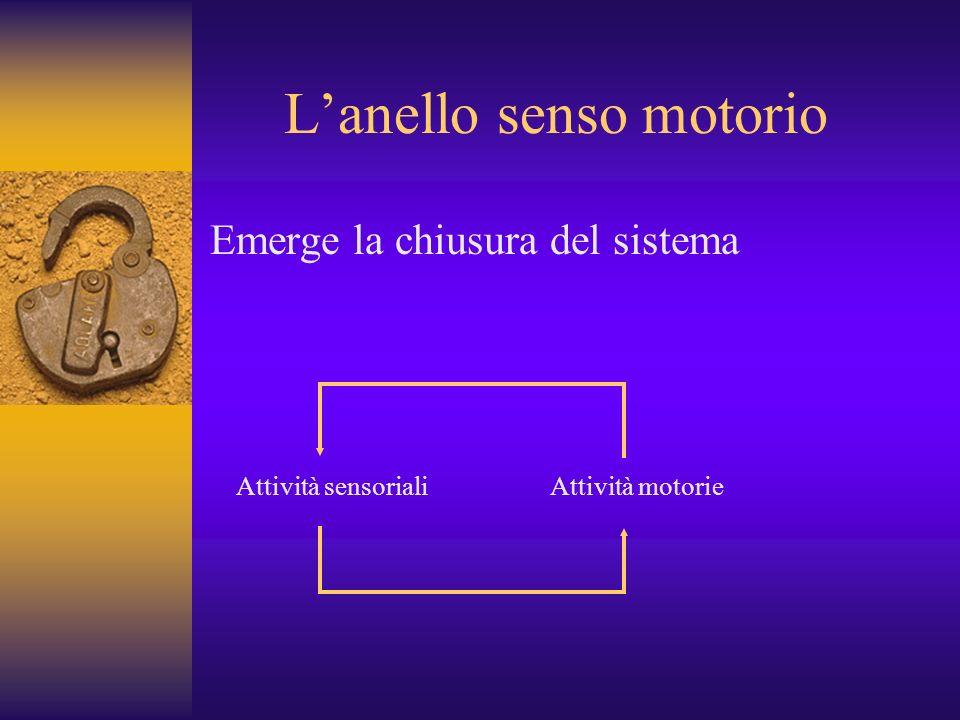 L'anello senso motorio