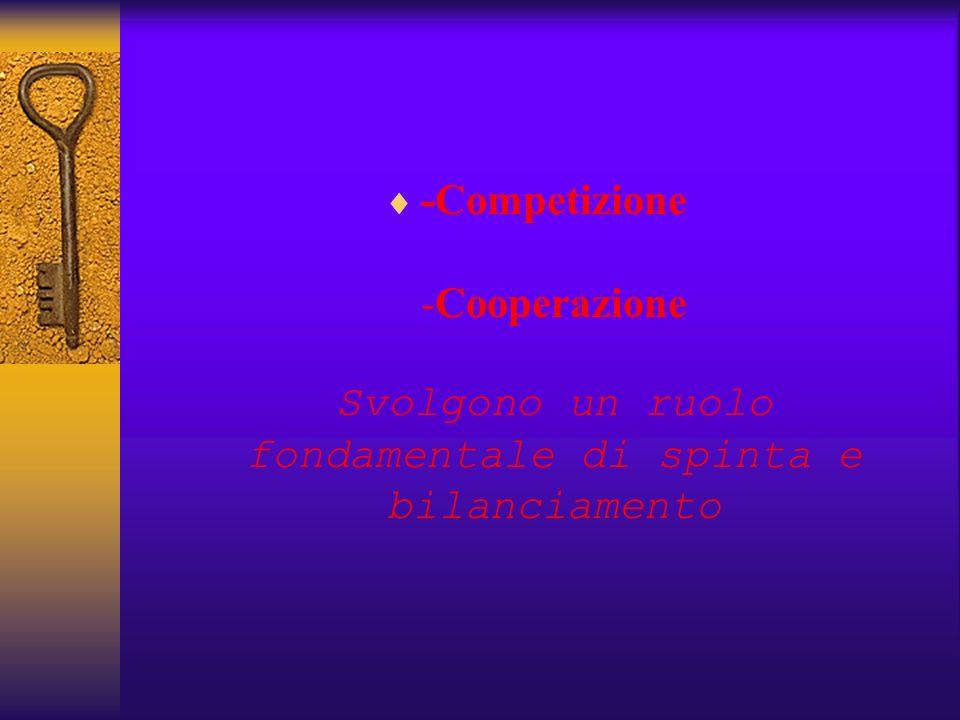 -Competizione -Cooperazione Svolgono un ruolo fondamentale di spinta e bilanciamento