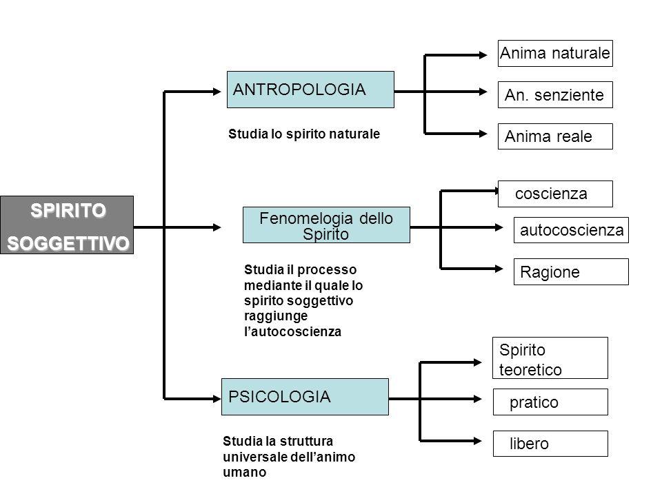 Fenomelogia dello Spirito