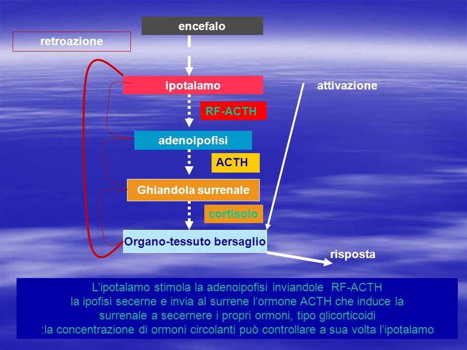 Organo-tessuto bersaglio