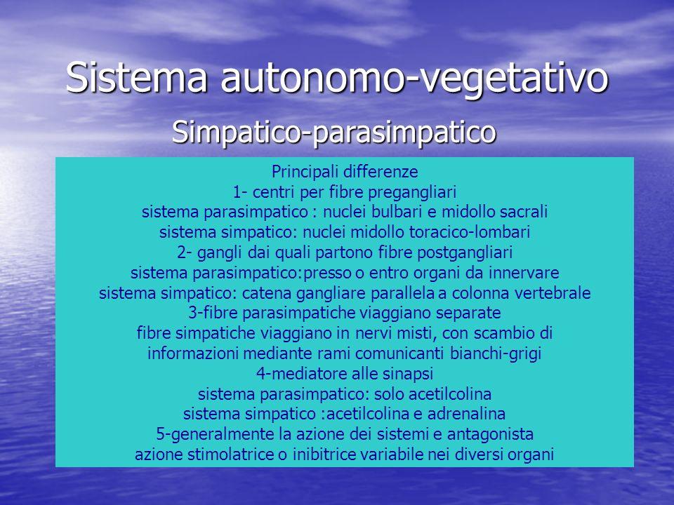 Sistema autonomo-vegetativo