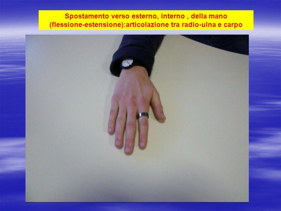 Spostamento verso esterno, interno , della mano (flessione-estensione):articolazione tra radio-ulna e carpo
