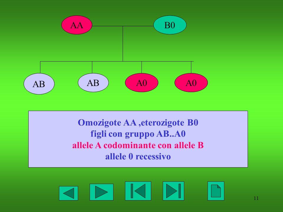Omozigote AA ,eterozigote B0 allele A codominante con allele B