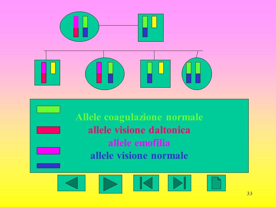 Allele coagulazione normale allele visione daltonica allele emofilia