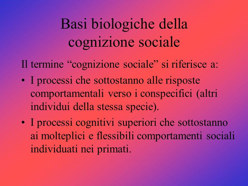 Basi biologiche della cognizione sociale